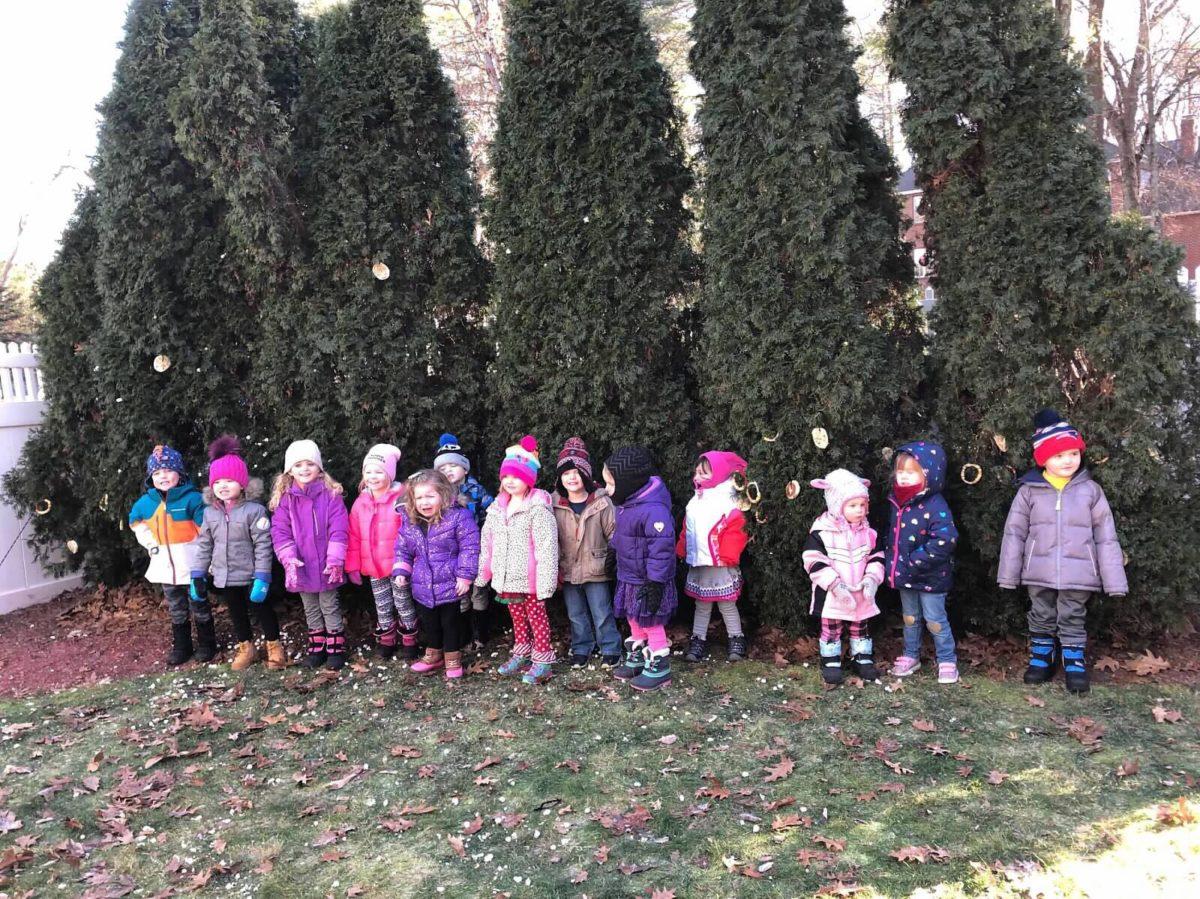 Preschool Tree Decorating Field Trip